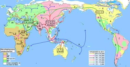 Migraciones humanas en haplogrupos mitocondriales